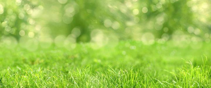 Umweltschutz - das sollten Sie wissen!