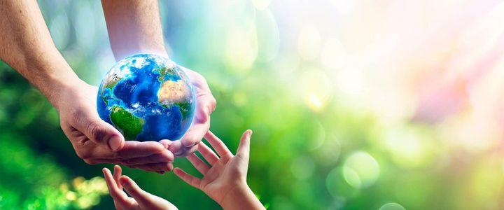 Der Weg zum klimaneutralen Unternehmen – so machen sich Unternehmen fit für die Zukunft