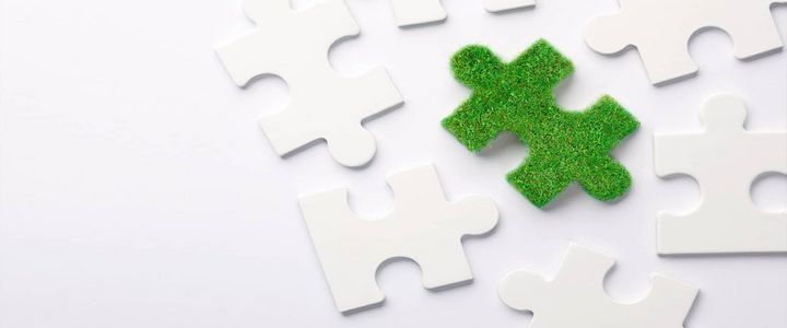Umweltschutz und Nachhaltigkeit in Unternehmen – wer ist verantwortlich?