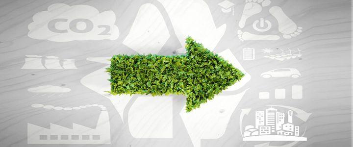 Das Umweltmanagementsystem